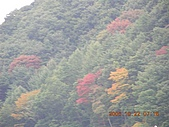 2005-10-22日本東京行第四天,淺草寺,明治神宮之旅~:DSCN0721
