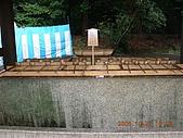 2005-10-22日本東京行第四天,淺草寺,明治神宮之旅~:DSCN0744