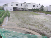 OKㄝ鮮Q綠蘆筍園四08.13:轉作玉米泡水.JPG