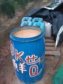 採收篇0308:菌菌有味.jpg