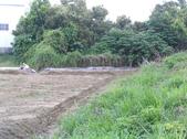 Okㄝ鮮Q綠蘆筍園3(06.30):整堤排水道