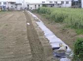 Okㄝ鮮Q綠蘆筍園3(06.30):重機械整堤希望經得起考驗
