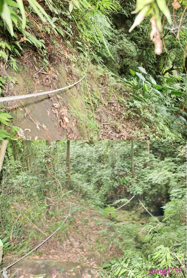 20邊坡護繩.jpg - 875畝畝山