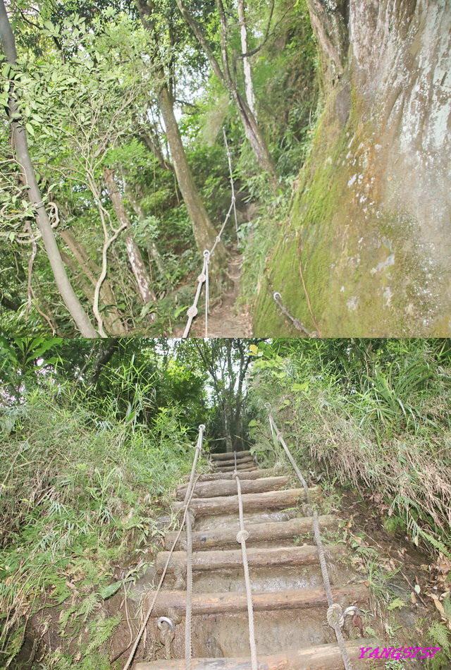 16陡梯.jpg - 905三猴越嶺
