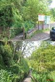 646日月潭:2生態步道.jpg