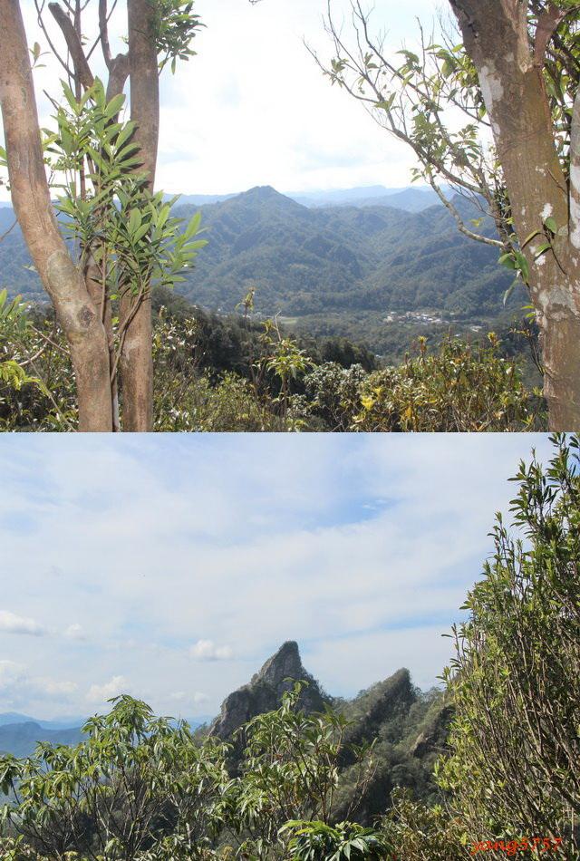 21石筍尖.jpg - 618三坑山