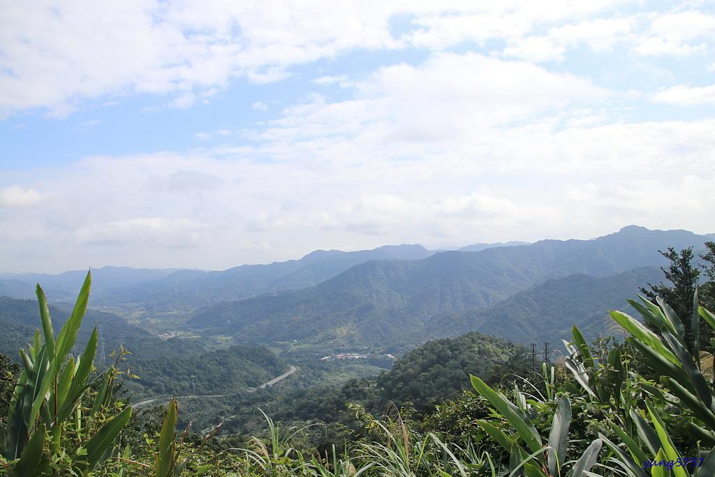 1IMG_0042.JPG - 823上內平林山