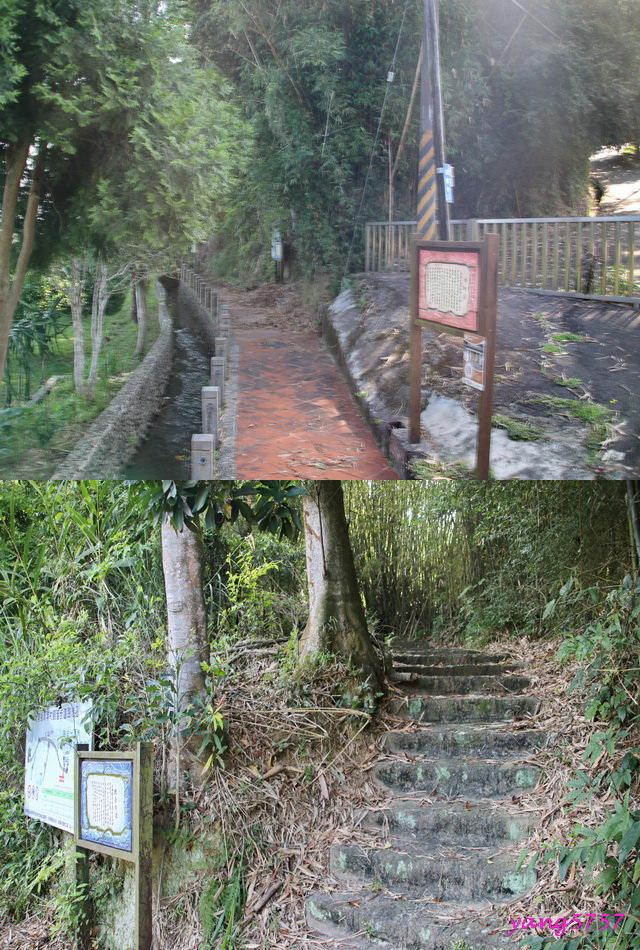3觀音步道.jpg - 870分水龍山