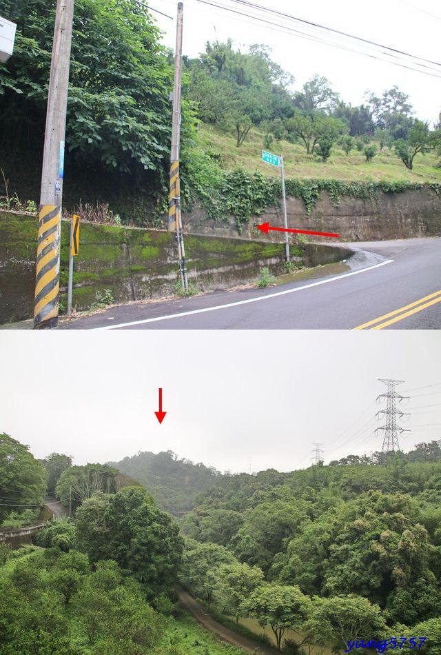 3梯子坑山.jpg - 833石井山