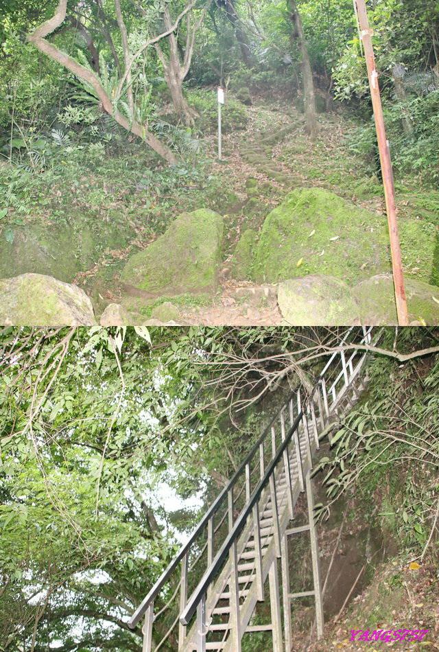 12天梯.jpg - 905三猴越嶺