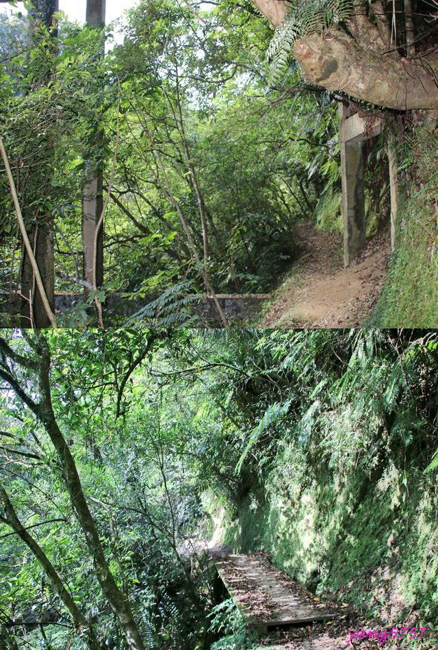 4棧橋.jpg - 875畝畝山