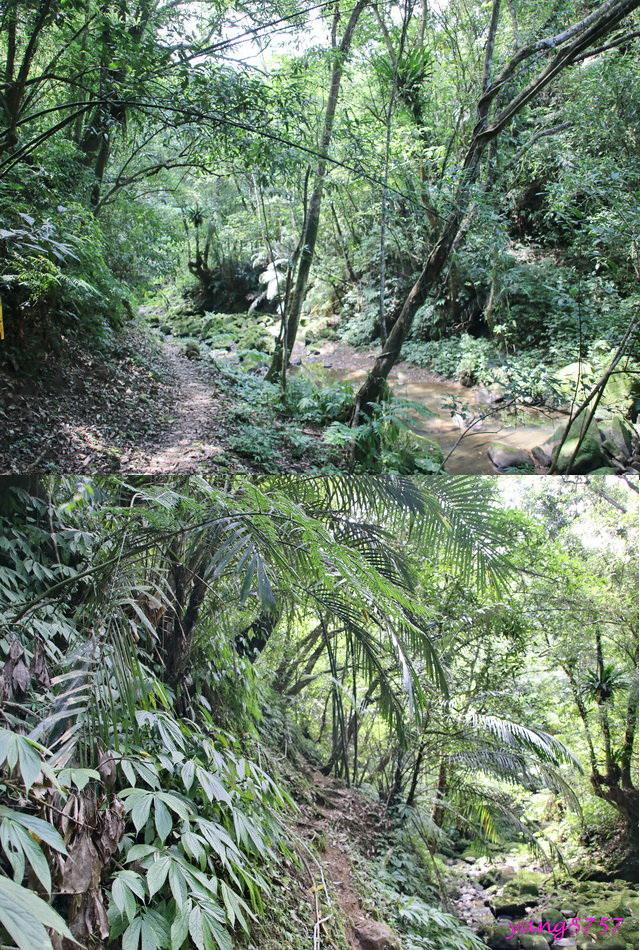 27灰窯溪.jpg - 875畝畝山