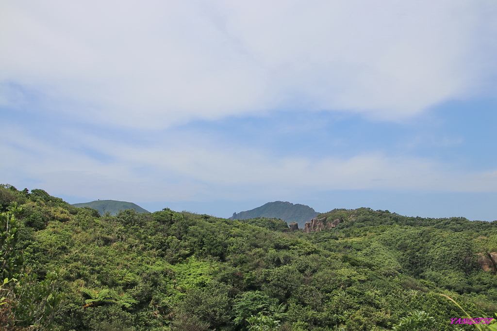 1IMG_3919.JPG - 882南雅山