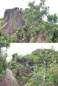 882南雅山:15巨岩.jpg