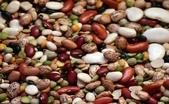 草本營養學:Beans.jpg