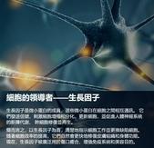 天然個人護理用品:犀補靈強效修復軟膏 褥瘡 糖尿腳潰瘍 (Cytopeutic Advance Rejuvenating Cream) 盈康社8.jpg