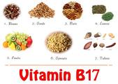 草本營養學:Vitamin-B17.jpg
