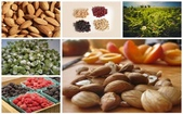 草本營養學:6-natural-sources-of-vitamin-b17-you-must-include-in-your-diet.jpg