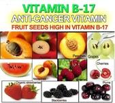 草本營養學:anti-cancer-vitamin-vitamin-b17.jpg