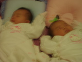 ♥姐妹情深♡之零至六個月♥:1283003202.jpg