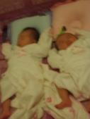 ♥姐妹情深♡之零至六個月♥:1283003203.jpg