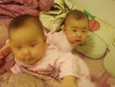 ♥姐妹情深♡之六至十二個月♥:1487486181.jpg