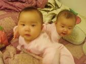 ♥姐妹情深♡之六至十二個月♥:1487486182.jpg