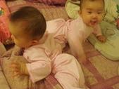 ♥姐妹情深♡之六至十二個月♥:1487486183.jpg