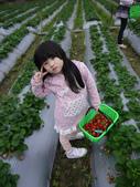 2012大湖草莓遊:1014508022.jpg