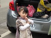 2011大湖草莓(二):1182254713.jpg