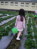 2012大湖草莓遊:1014508023.jpg