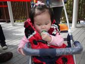 2012小烏來天空步道:1817638760.jpg