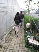 2011大湖草莓(二):1182254715.jpg