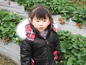 2011大湖草莓(二):1182254705.jpg