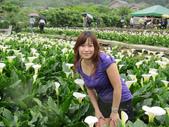 20110501 陽明山:1703239398.jpg
