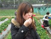 2011大湖草莓(二):1182254706.jpg