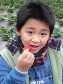 2011大湖草莓(二):1182254697.jpg