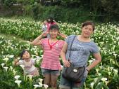 20110501 陽明山:1703239400.jpg
