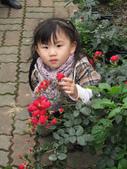 2011大湖草莓(二):1182254717.jpg