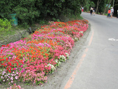 20110508 宜蘭綠色博覽會:1377823778.jpg