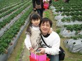 2011大湖草莓(二):1182254709.jpg