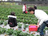 2011大湖草莓(二):1182254701.jpg
