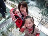 2012小烏來天空步道:1817638766.jpg