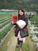 2011大湖草莓(二):1182254710.jpg