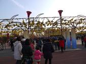 201202鹿港-花燈:1828645204.jpg