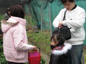 2011大湖草莓(二):1182254703.jpg